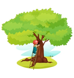 Ladder under tree vector image