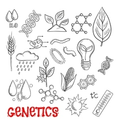 Agriculture and genetic technology sketch icons vector