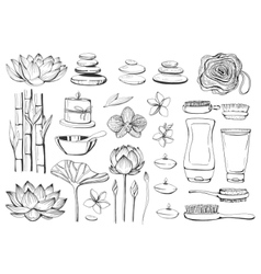 Set of hand drawn elements spa vector image