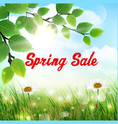 Natural background with word spring sale vector