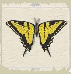 Vintage postcard with image swallowtail vector