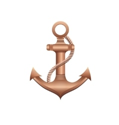 Bronze anchor vector