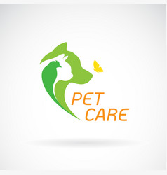bird cat dog and butterfly on white background vector image