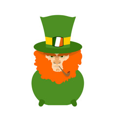 Leprechaun with red beard in pot st patricks day vector