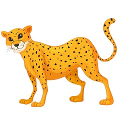 Cartoon cheetah vector