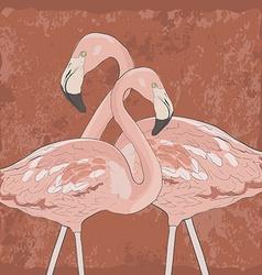FlamingoAkva8 vector image vector image