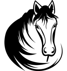 Head of horse vector