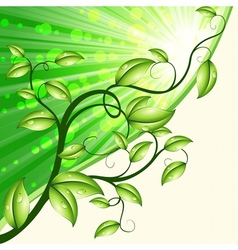 Dynamic nature design in green and tan vector