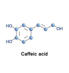 caffeic hydroxycinnamic acid vector image vector image