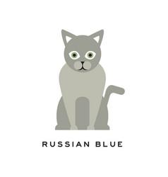 Russian blue cat adorable short-haired feline vector