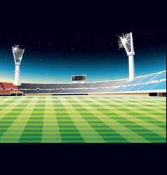 Sporting stadium vector image