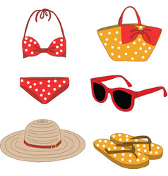 Summer clothes vector