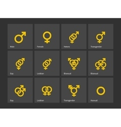 Gender and sexual orientation icons vector
