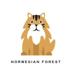 Norwegian forest cat fluffy domestic animal with vector
