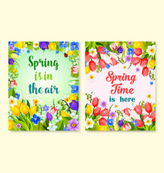 spring flower card with floral frame and border vector image