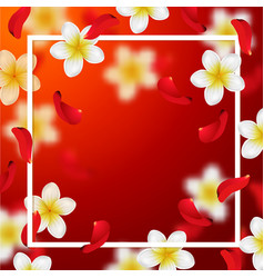 summer and spring background with tropical flower vector image