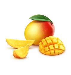 Whole and sliced mango cubes vector