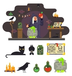 Witch cook magical sweet apple laboratory icons vector