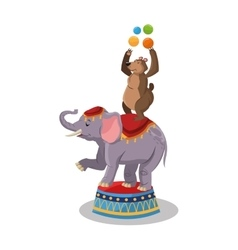 Elephant and bear of circus and carnival design vector