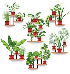 pot plants set vector image
