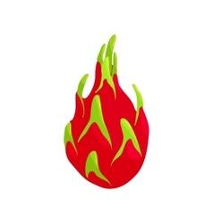 Dragon fruit icon cartoon style vector