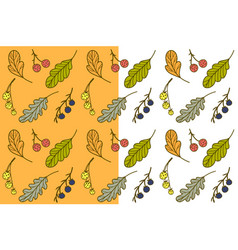 Leaves and berries seamless pattern vector