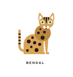 Purebred bengal cat cartoon domestic animal with vector