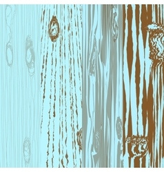 Set of different wooden boards with knots Old vector image vector image