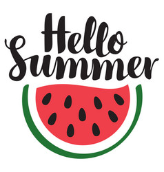 summer banner with inscription and watermelon vector image