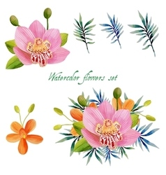 Watercolor floral set for your design vector