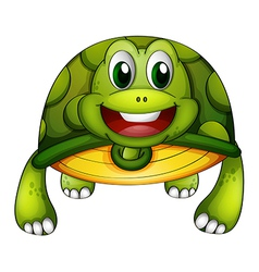A green turtle vector image
