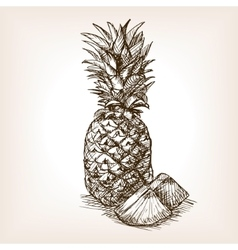 Pineapple fruit hand drawn sketch style vector image