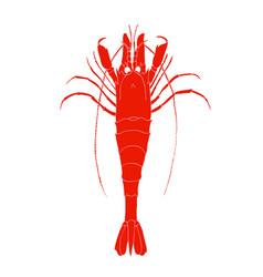 Red shrimp logo isolated on white background vector