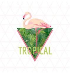 tropical flamingo bird background summer design vector image