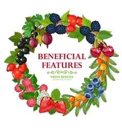 Fresh natural berries wreath decorative frame vector