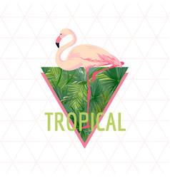 tropical flamingo bird background summer design vector image vector image