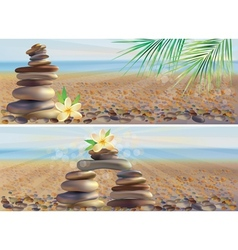 Massage spa stones vector