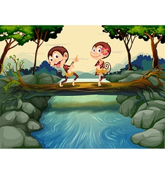 Two monkeys dancing while crossing the river vector