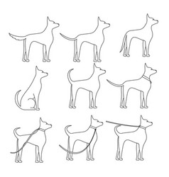 A dog sideways in full growth sketch in different vector