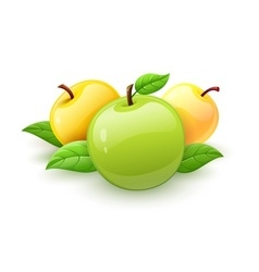 Apple fruits with green vector