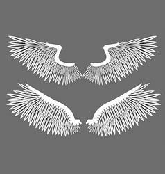 vector wings vector image