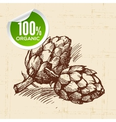 Hand drawn sketch vegetable artichoke eco food vector