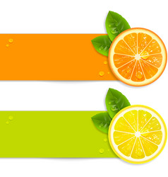 Banners with orange and lemon vector