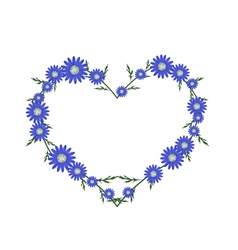 Beautiful blue daisy flowers in heart shape vector
