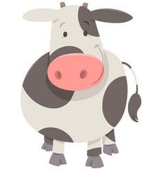 Cute spotted cow or calf vector
