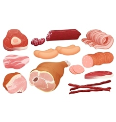 Different kinds of meat collection pork meat vector image
