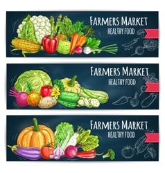 Farmers market banners with sketched vegetables vector