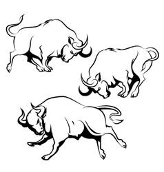 Fighting bull set vector