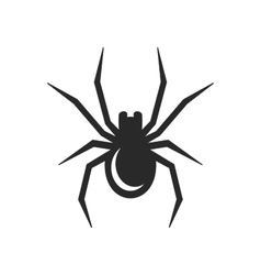 Black Spider Icon vector image