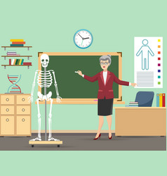 Classroom with human skeleton and teacher vector